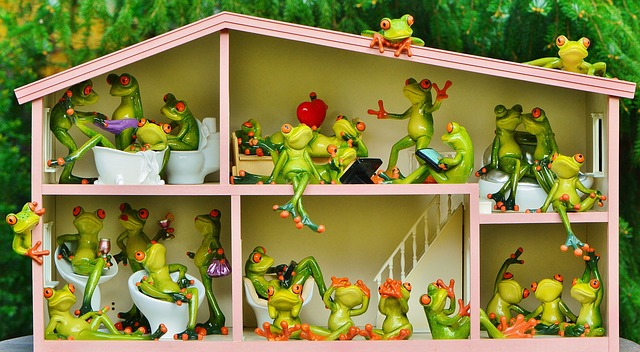 frogs-1382827_640
