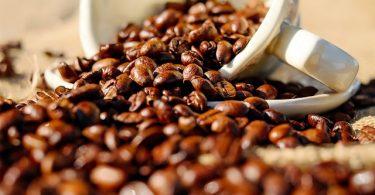 coffee-1576552_640 (1)